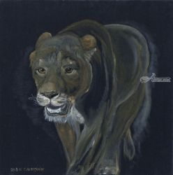Lion female walking, Paintings, Fine Art, Animals, Oil,Painting, By Claudia Luethi alias Abdelghafar