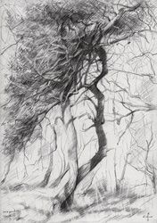 Meyendel - 12-06-14, Drawings / Sketch, Abstract,Impressionism,Realism, Composition,Figurative,Inspirational,Landscape,Nature, Pencil, By Corne Akkers
