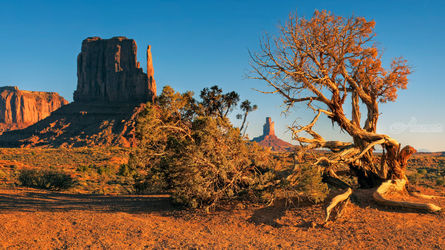 Monument Valley, Photography, Photorealism, Land Art,Landscape, Photography: Premium Print, By Mike DeCesare