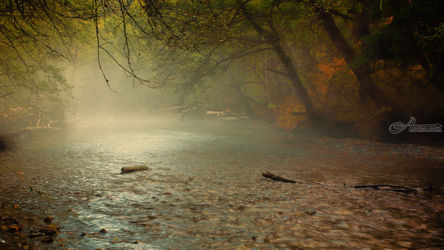 Ohanapecosh River, Photography, Photorealism, Landscape, Photography: Premium Print, By Mike DeCesare