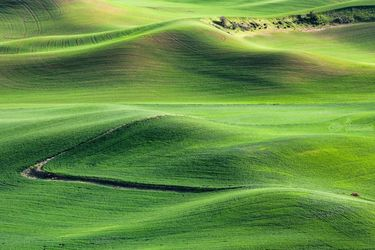 Palouse Farmland, Photography, Photorealism, Landscape, Photography: Premium Print, By Mike DeCesare