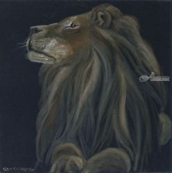 Proud lion, Paintings, Fine Art, Animals, Oil,Painting, By Claudia Luethi alias Abdelghafar