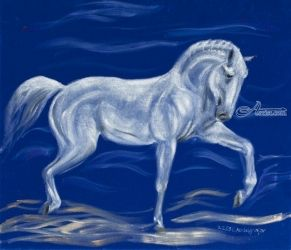 Proud white horse on blue<br>velvet, Paintings, Fine Art, Animals, Oil,Painting, By Claudia Luethi alias Abdelghafar