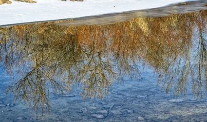 Reflection, Architecture, Fine Art, Nature, Photography: Premium Print, By Jim Stewart