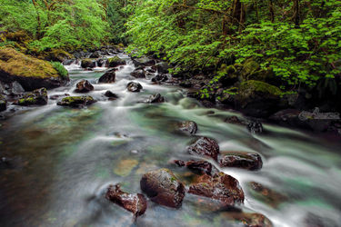 Rocky Brook Creek, Photography, Photorealism, Landscape, Photography: Premium Print, By Mike DeCesare