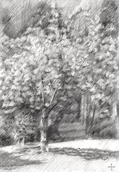 Royal estate 'De Horsten' -<br>12-04-14, Drawings / Sketch, Abstract,Impressionism,Realism, Composition,Figurative,Inspirational,Landscape,Nature, Pencil, By Corne Akkers