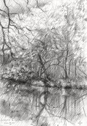 Royal estate 'De Horsten' -<br>14-04-14, Drawings / Sketch, Abstract,Fine Art,Impressionism,Realism, Composition,Figurative,Inspirational,Landscape,Nature, Pencil, By Corne Akkers