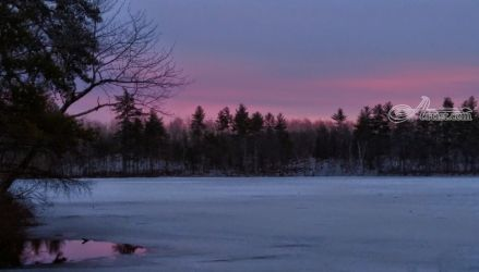 Sailor's Delight, Photography, Photorealism, Nature, Photography: Photographic Print, By Elizabeth DeFeo