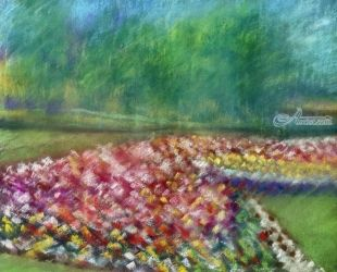 Semi Abstract Floral, Paintings,Pastel, Abstract,Fine Art,Realism, Botanical,Floral,Landscape, Pastel, By Matthew Evans