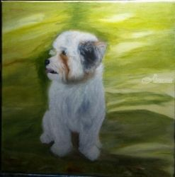 Shih tzu Dog Benji, Paintings, Fine Art,Realism, Portrait, Canvas,Oil, By Mike Chaple