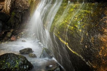 Single Tree Waterfall, Photography, Photorealism, Landscape, Photography: Premium Print, By Mike DeCesare