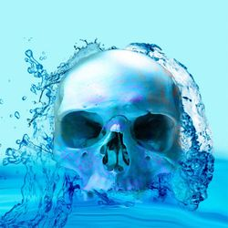 Skull in Water, Digital Art / Computer Art, Commercial Design,Photorealism,Shock, Anatomy, Digital, By Matthew Lacey