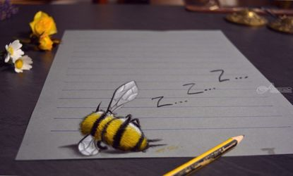 SLEEPING BEE /funny 3D drawing, Drawings / Sketch, Realism, 3-D, Oil, By Stefan Pabst