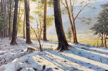 Snow on the Hill, Paintings, Impressionism, Botanical,Landscape, Canvas,Oil, By Mason Kang