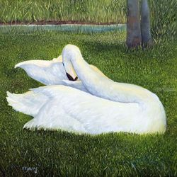 Swan Grooming, Paintings, Impressionism, Animals, Canvas, By Alicia Maury