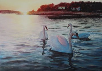 Swans Dancing, Paintings, Realism, Animals,Land Art,Landscape,Nature,Wildlife, Canvas,Oil, By Viktor Kucheryavyy