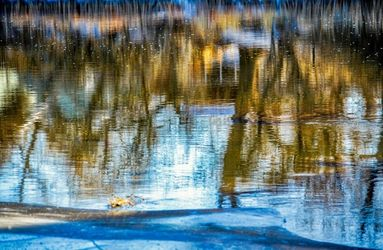 The Beauty Of Reflections, Photography, Fine Art, Nature, Photography: Premium Print, By Jim Stewart