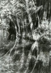 The Hague forest - 23-06-15, Drawings / Sketch, Fine Art,Impressionism,Realism,Surrealism, Composition,Figurative,Inspirational,Landscape,Nature, Pencil, By Corne Akkers