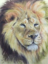 The King, Paintings, Fine Art,Photorealism,Realism, Animals,Portrait, Pastel,Pencil, By Abha Neotia