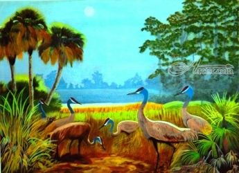 The Sandhill Cranes, Paintings, Realism, Animals,Landscape,Nature, Acrylic, By OLIVER MACHADO