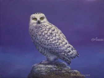 The Winter Guest, Paintings, Fine Art, Wildlife, Acrylic, By Sean Conlon