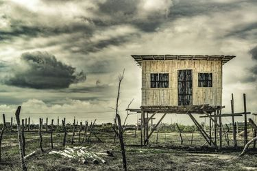 Traditional Cane House,<br>Guayas, Ecuador, Photography, Realism, Landscape, Photography: Photographic Print, By Daniel Ferreira Leites