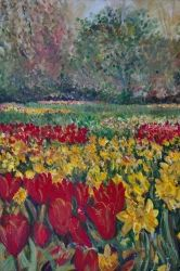 Tulip Fields, Paintings, Fine Art,Realism, Botanical,Floral, Acrylic,Canvas, By Matthew Evans