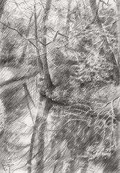 Voorburg - 22-07-14, Drawings / Sketch, Abstract,Fine Art,Impressionism,Realism, Cityscape,Composition,Figurative,Inspirational,Landscape,Nature, Pencil, By Corne Akkers