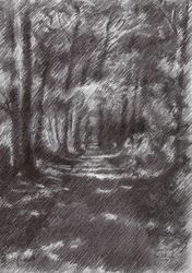 Voorburg – 27-08-19, Drawings / Sketch, Fine Art,Impressionism,Realism, Composition,Figurative,Inspirational,Landscape,Nature, Pencil, By Corne Akkers