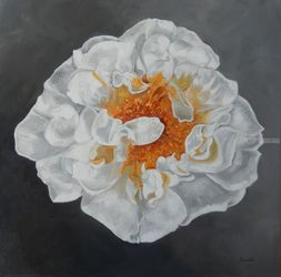 White and Yellow Peony, Paintings, Fine Art,Impressionism,Modernism,Romanticism, Botanical,Floral, Canvas,Oil, By Graciela Castro