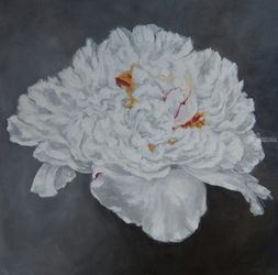 White Peony, Paintings, Expressionism,Fine Art,Impressionism,Modernism, Botanical,Floral, Oil, By Graciela Castro