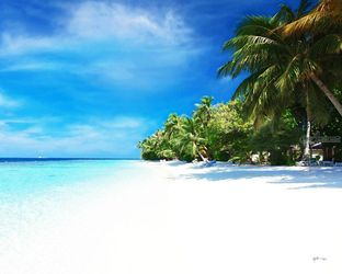 White Sugar Fine Sandy<br>Beach/maldives/watercolor