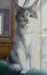 Yankee, Paintings, Fine Art, Animals, Oil, By Gregg Hinlicky