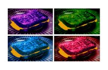 """ The Grilled Cheese Sandwiches "", Photography, Pop Art, Decorative, Photography: Stretched Canvas Print, By Michael C Bertsch"