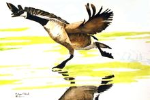 """ The Take Off"", Paintings, Realism, Animals, Watercolor, By William Clark"