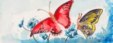 Butterflies, Paintings, Fine Art, Botanical, Nature, Painting, Watercolor, By Shaunna Perkins