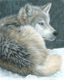 Cold Evening, Drawings / Sketch,Paintings, Photorealism,Realism, Animals,Nature,Wildlife, Painting,Pencil, By Carla Kurt