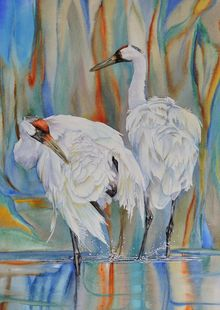 Crane Feathers, Paintings, Realism, Wildlife, Watercolor, By Vicky Lilla