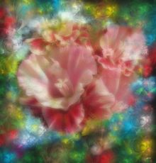 Flower Bouquet, Paintings, Abstract, Floral, Painting, By Angelo