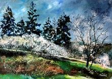 Hawthorn in blossom 75, Paintings, Impressionism, Landscape, Canvas, By Pol Ledent