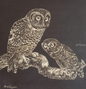 Owls 1, Paintings, Minimalism, Realism, Nature, The Primative, Wildlife, Oil, By Rick Seguso